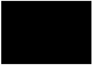 carre-du-palais-logo