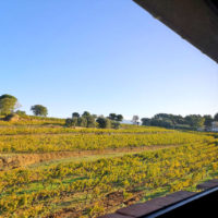 gîte, Beaumes de Venise, Vaucluse, Provence, Mont Ventoux
