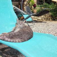 bain de soleil, relax, détente, vacances, séjour, week-end, beaumes de venise, vaucluse