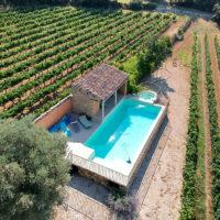 piscine, vignes, domaine viticole, Beaumes de Venise